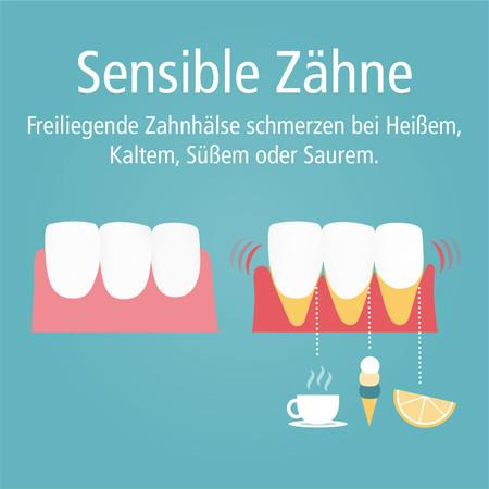 sensible-zaehne_quadratisch-003
