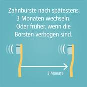 Zahnbuerste_Wechsel-004