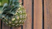 ananas-005