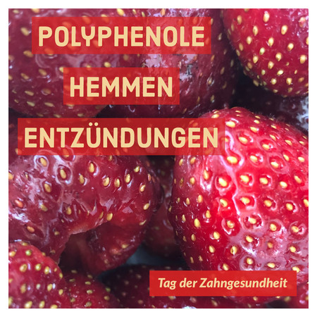Infobild Erdbeere