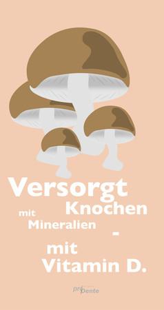 illustration-champignon-hoch