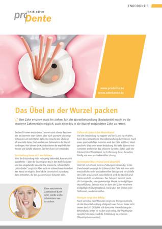 Titel_Magazin_Endodontie